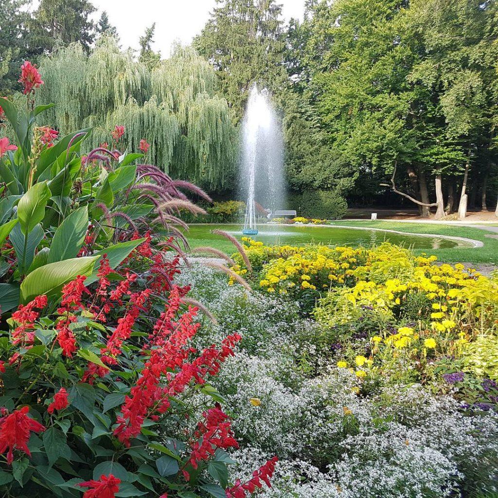 Le-Perreux-Park #park #springbrunnen #forchheimshots #immeramknipsen #verrücktnachfotos #maliliamdrücker #meinblickwinkel #bilderknipsen #farbenspiel #beautiful #amazing #picoftheday #relax #instagram #instafoto #instalove #photography #outdoor #franken #unterwegs #igersforchheim #forchheimerleben #forchheimviews #schau_fei_forchheim#grün #stadtpark #baum #blumen #fränkischeschweiz #abschalten