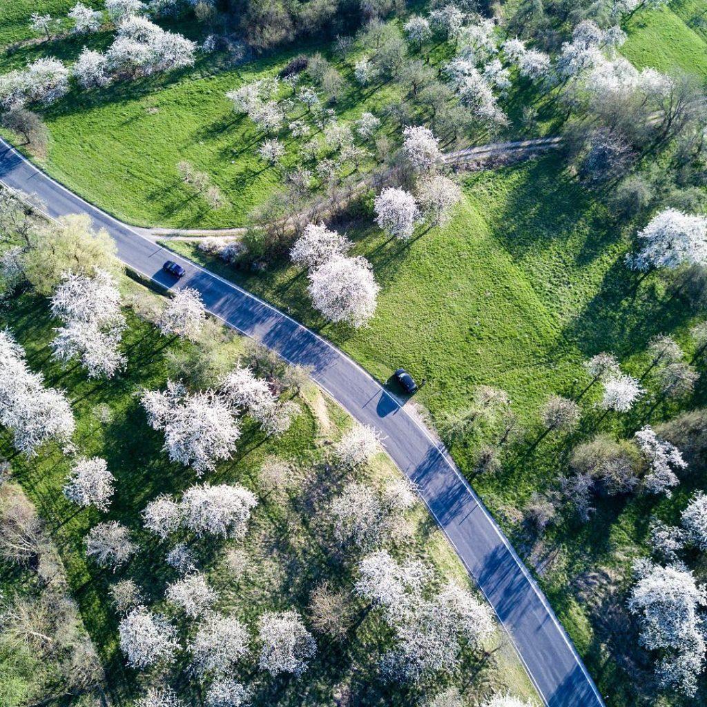 #kirschblüten #pretzfeld #ebermannstadt #ig_franken #franken #deinbayern #franconia #bavaria #franconianswitzerland #forchheim2017 #igersforchheim #drone #dronemag #dronestagram #dji #djimavic #mymavic #mavic #forchheimshots #dronefluencer #airvuz