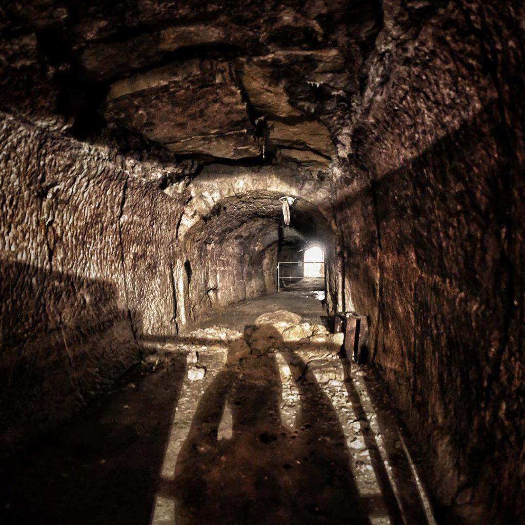 Falls sich mal jemand gefragt hat, warum das am Annafest Kellerwald heisst: beim #annafestwalk17 durften wir einen Blick in die Tiefen der alten und kühlen Bierkeller im Fels werfen. Biergeister inklusive ?? #annafest2017 #igersforchheim #forchheimshots #forchheimviews #forchheimerleben #bierkeller #tunnel #lichtamendedestunnels #shadowhunters #shadow #shadowplay #diewocheaufinstagram